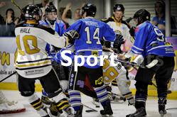 Sport